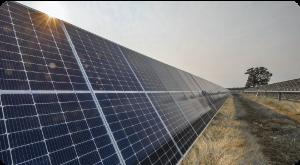 Lightsource bp anuncia investimento de 900 M€ em energia solar em Portugal
